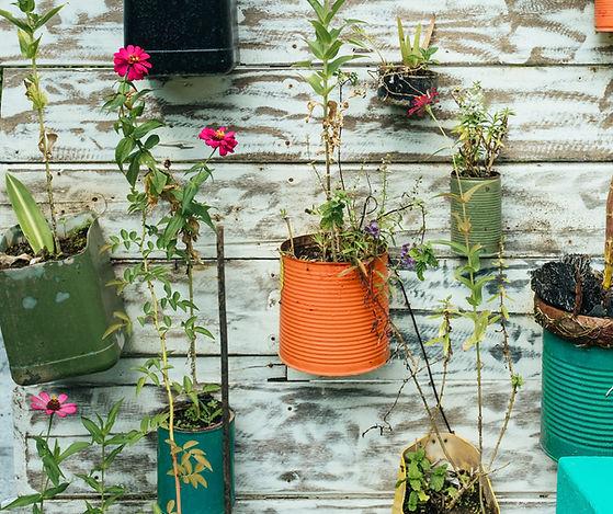 Pots de fleurs suspendus