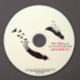 עיצוב דיסק, מיתוג, מוסיקה, עיצוב תווית, עיצוב גרפי
