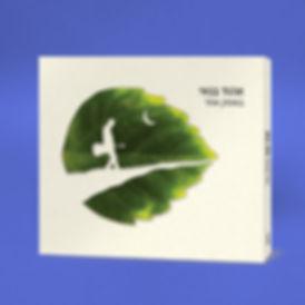 לוגו, עיצוב לוגו, מיתוג, אן.אם.סי, מארז כפול