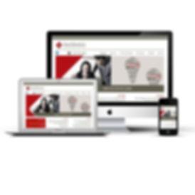 עיצוב אתר, ינאי פלג ושות, רספונסיבי, מיזוגים ורכישות