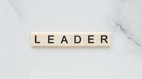 leader-4775796_1920 b.jpg