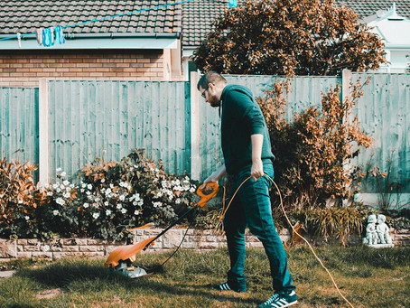 10 household garden problems and how to fix them