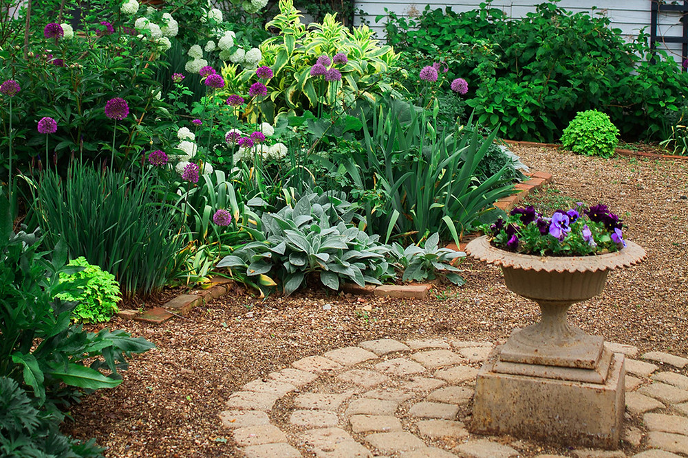Create a low maintenance garden