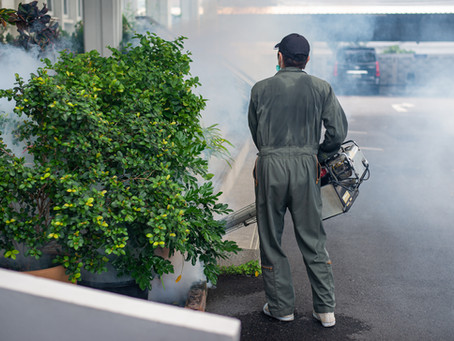 IWESCO offers long-lasting pest control services