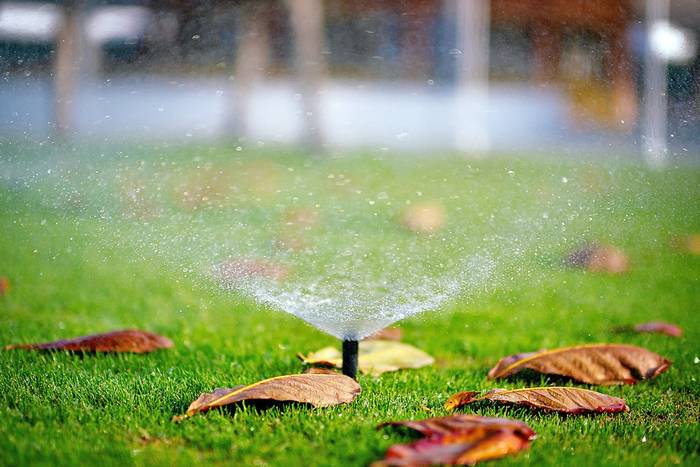 How to fix these common irrigation problems in your garden