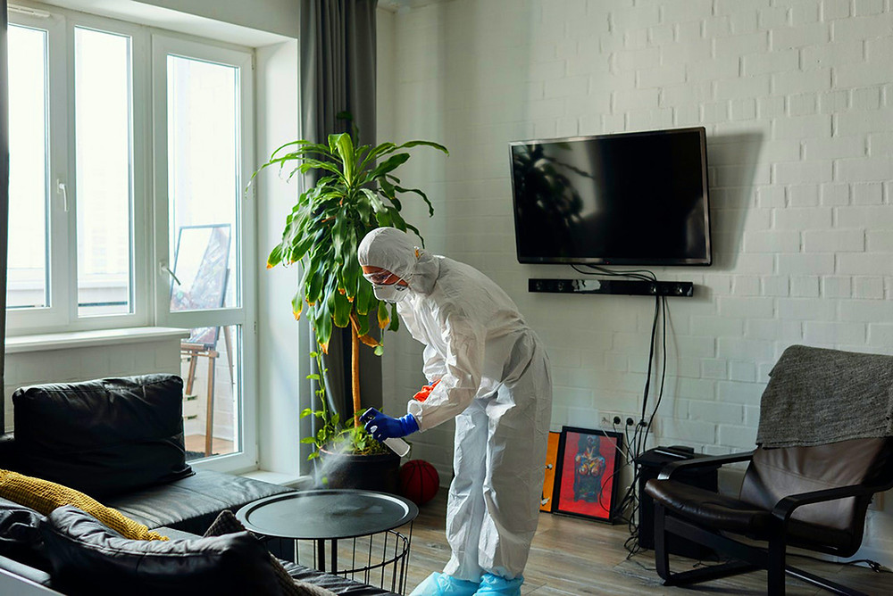 Professional cleaning service working in a home