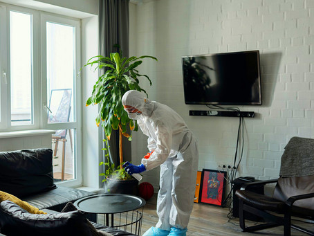 Why you should use a professional cleaning service for your home