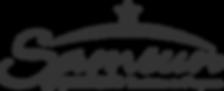 Samsun Logo.png