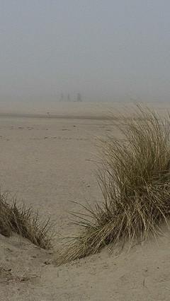 3 in fog, Veere Beach, Netherlands 2015