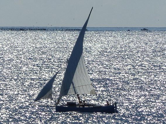 Silversailing, Valencia ES, 2017
