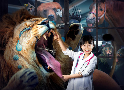 The Animal Dr