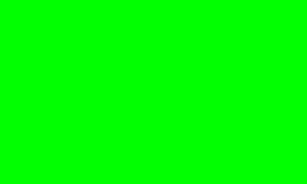 """Paket """"Limettengrün"""""""