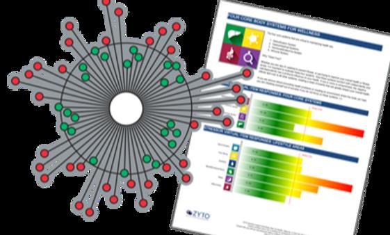 Zyto Biokommunikations-Scan