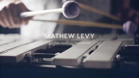 Meet our Musicians   Mathew Levy