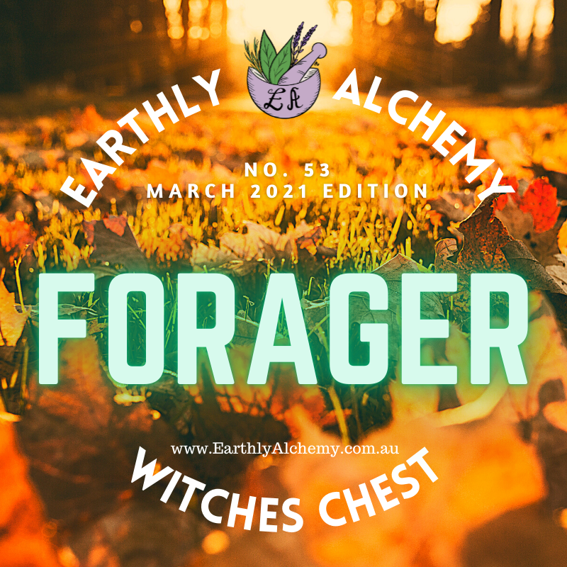 FORAGER MARCH 2021