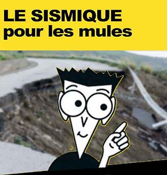 sismique pour les mules.jpg