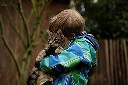 Cat snuggle.jpg