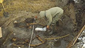 archeology Denmark.jpg