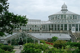 Morguefile Greenhouse PHOTO-pedrojperez.