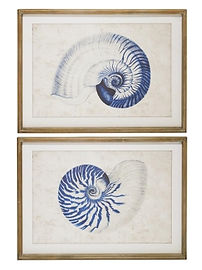 Hamptons shell print sold in pairs 50x70