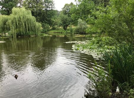 Ogrody Podkarpacia: w Łańcucie przy Pałacu Lubomirskich