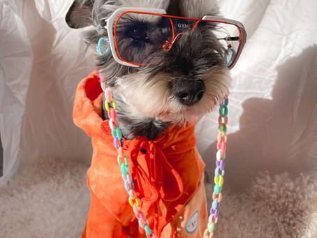 Top 8 Sunglasses Trends Celebrities Are Loving