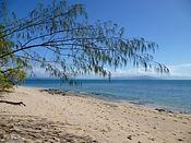 Low Isles Beach