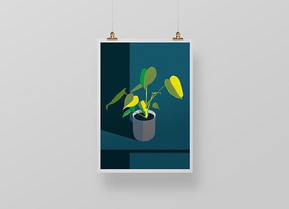 Plant in a pot (Dawn)
