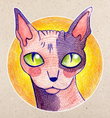 kitty3three_edited.jpg