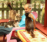 cats&Doug.jpg