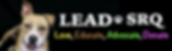 lead banner 2.png