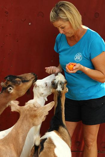goat&Gail5.png