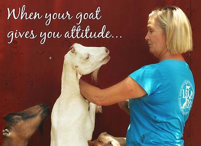 goat&Gailattitude-2.jpg