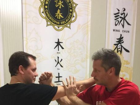 Stage de wing chun - kung fu le samedi 3 février
