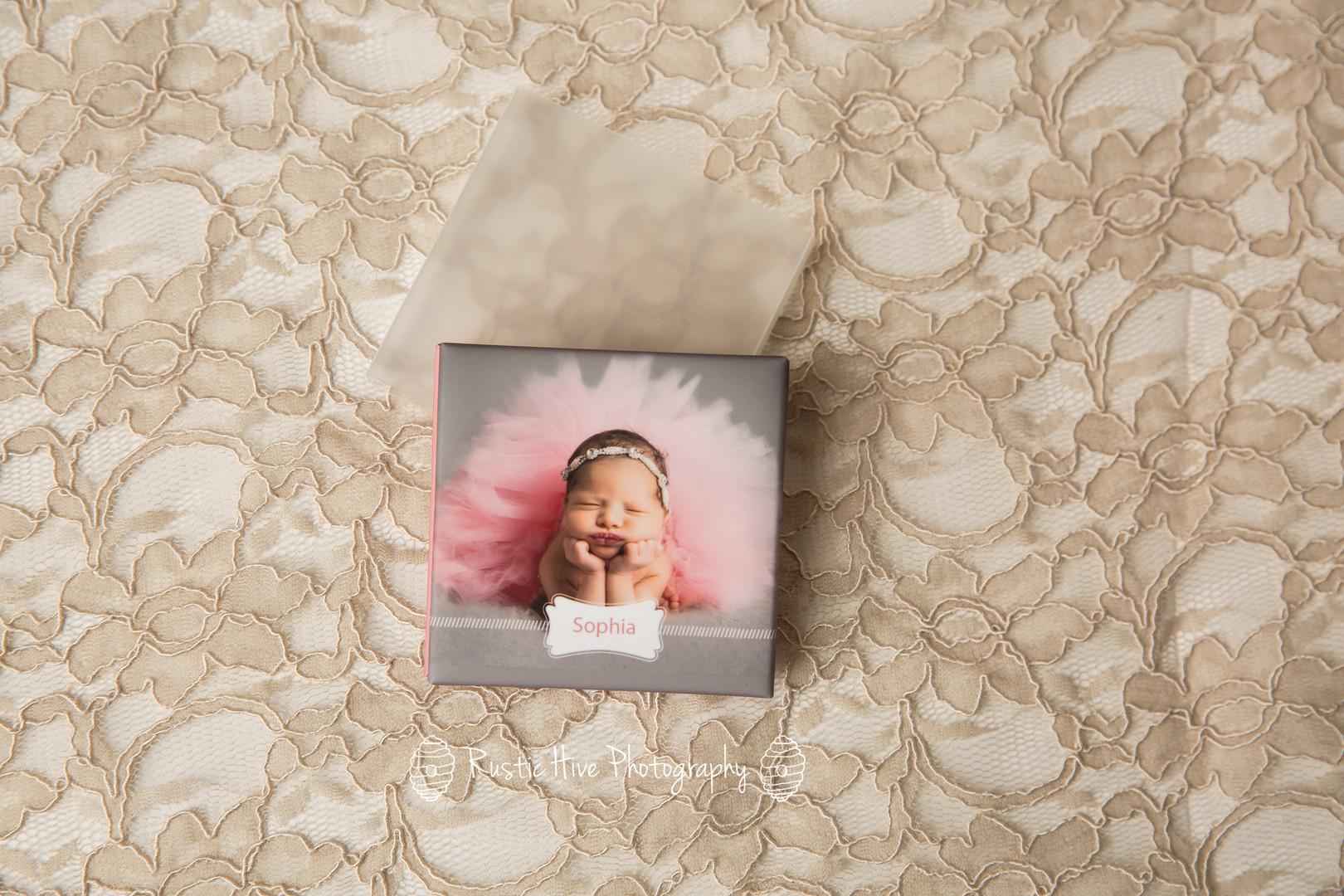 mini accordion album front and slip cover