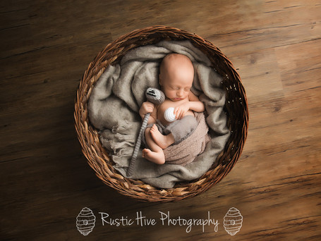 Baby B | Putnam Newborn Photgrapher
