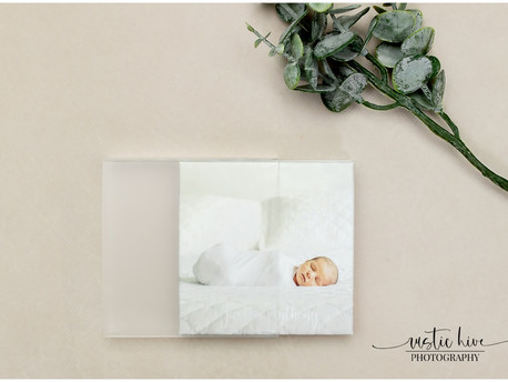 A Customer Favorite - Mini Albums/Westchester Newborn Photographer