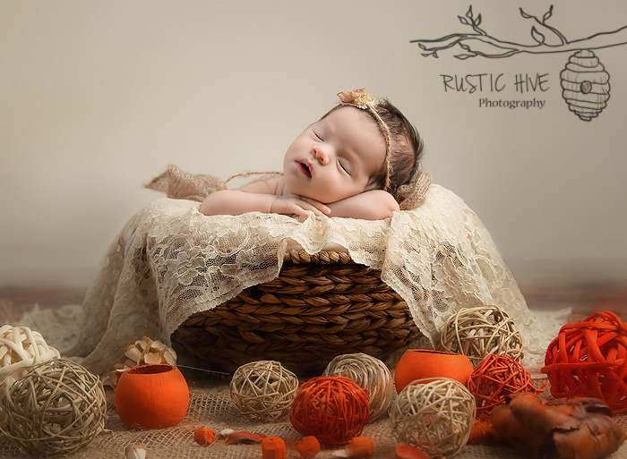 Putnam Newborn Photographer