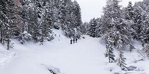 Schneeschuhläufer 1 © Thalia Wünsche
