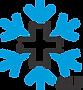 Link zu Institur für Schnee- und Lawinenforschung