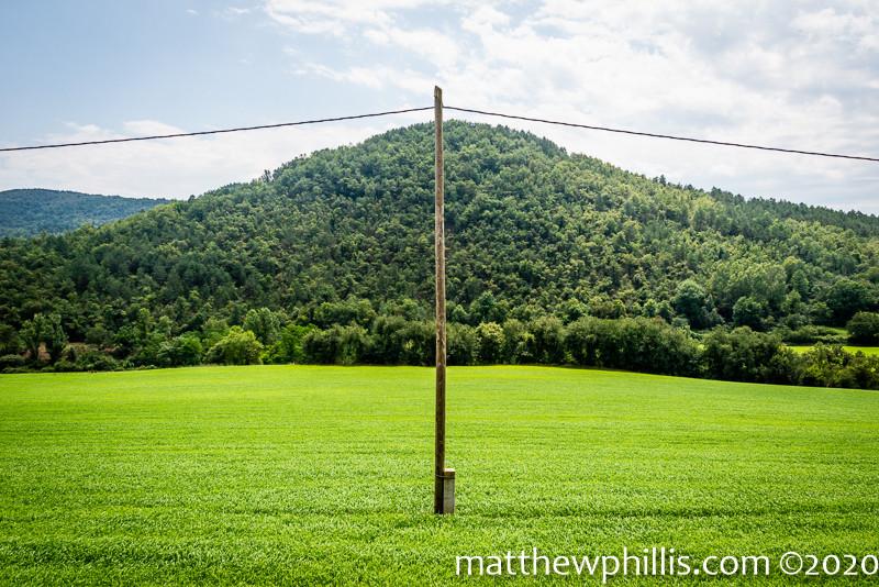 green countryside fields