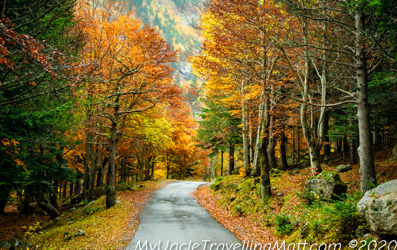 Viehla and the Vall de Boi