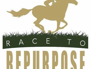 Race to Repurpose Training Challenge 2018