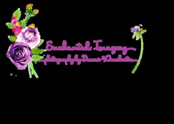 logo Enchanted Imagery