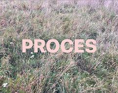 procesforfald.jpg