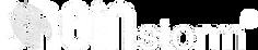 BreinStorm_Logo_bco_r (1).png