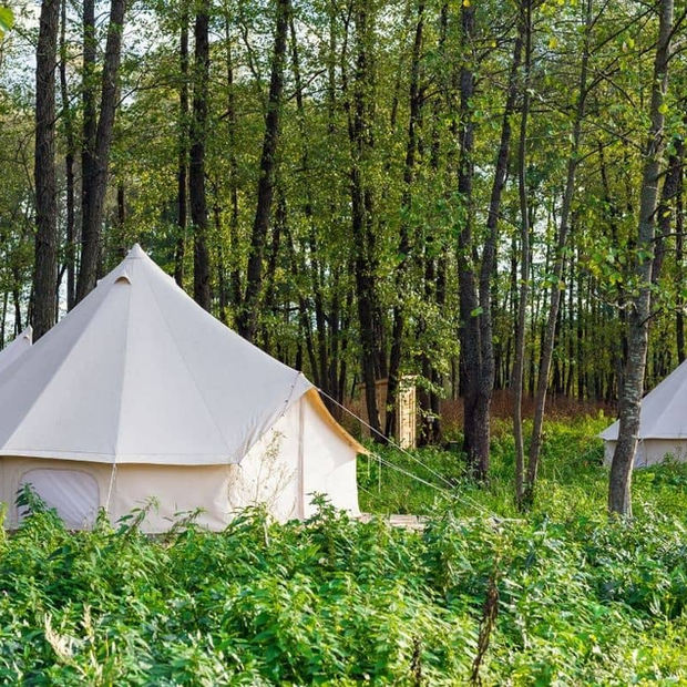 Bell Tents In The Woods.jpg