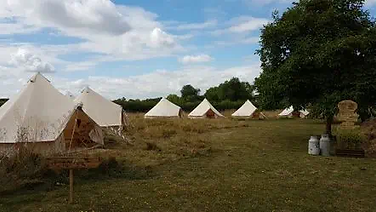 Bell Tents In A field near a tree and milk jugs