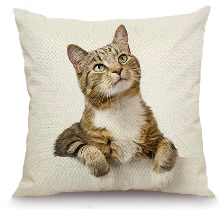 Brown Tabby / White Cat Cushion Cover