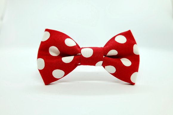 Red and White Dots Cat Collar